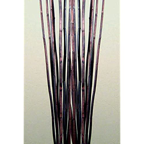 Decorative Sticks Amazon