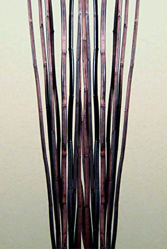 Green Floral Crafts Natural River Cane 4.5 Ft, Dark Brown- Pack of 15 ()