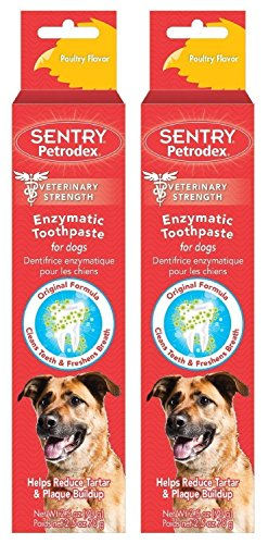 (Petrodex Enzymatic Toothpaste for Dogs - Poultry Flavor, 2.5-Ounce, 2 Pack)