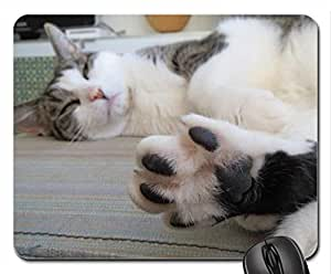 Bigfoot Cute Cool Decorative Design Animal Cat Mousepad Rainbow Designs