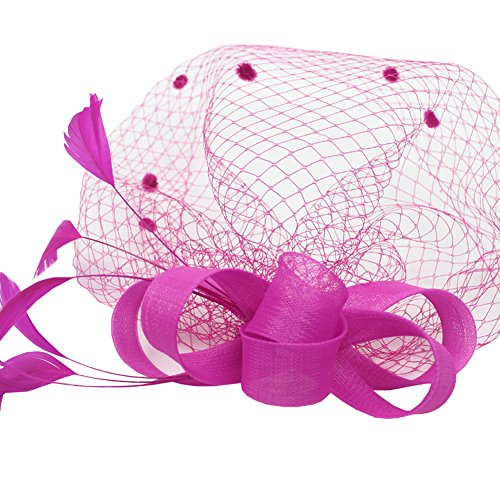 Urban CoCo Women's Vintage Flower Feather Mesh Net