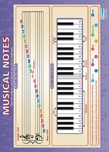 Musical Notes |Music Educational Chart in high gloss paper (33