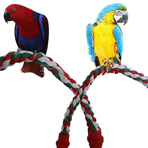 mkki Colorful Fashion Parrot Bird Toys Decorative Pet Bird Parrot Standing Rope Cockatiel Parakeet Conure Cage Swing Perch Toy by mkki (Image #1)