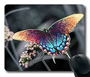 Rainbow Butterfly Oblong Mouse Pad by Cases & Mousepads