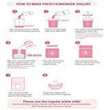 Yogurt Day Non-Electric Home Yogurt Maker with 2