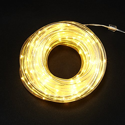 Outdoor Led Rope Lighting By The Foot - 7