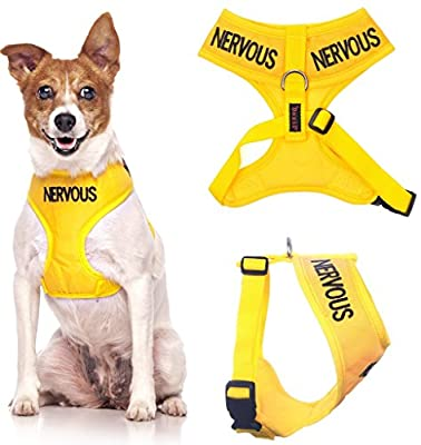 NERVOUS (Give Me Space) Yellow Color Coded Non-Pull Front and Back D Ring Padded and Waterproof Vest Dog Harness PREVENTS Accidents By Warning Others Of Your Dog In Advance