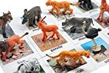 Montessori Safari Animal Match - Miniature Figurines with 2 Part Matching Cards
