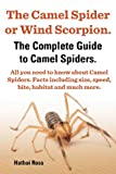 The Camel Spider or Wind Scorpion. the Complete Guide to Camel Spiders. All You Need to Know about Camel Spiders. Facts Including Size, Speed, Bite an
