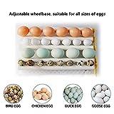 3 in 1 Intelligent Warming 16 Egg Incubators,Egg