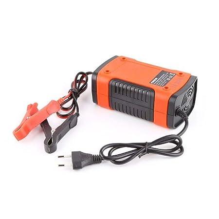EisEyen - Cargador de batería para Coche, 12 V, con ...