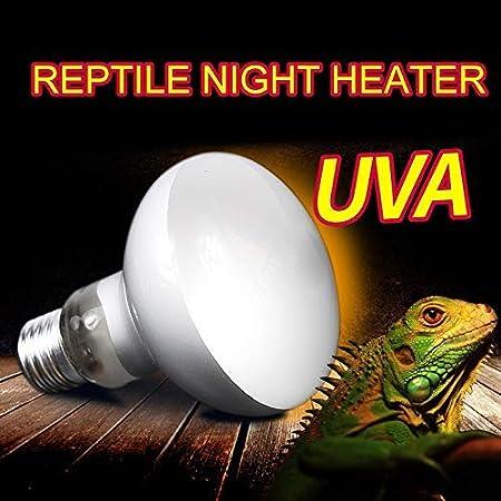ToomLight UVA + UVB Reptil Bombilla Tortuga Calentamiento Tomando el Sol Lámpara UV Anfibios Lagartos Temperatura Full Spectrum Bombilla de Calor para Uso de Reptiles: Amazon.es: Hogar