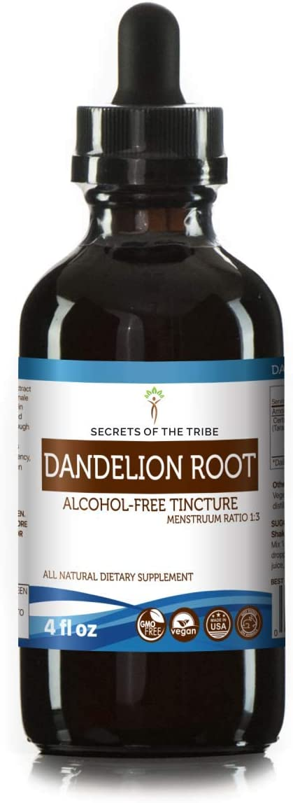 Dandelion Root Alcohol-Free Liquid Extract, Organic Dandelion Taraxacum Officinale Dried Root Tincture Supplement 4 FL OZ