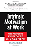Intrinsic Motivation at Work: What Really Drives Employee Engagement, Kenneth W Thomas, 1576755673
