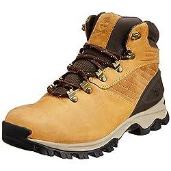 Timberland Men's Cadrad Boot