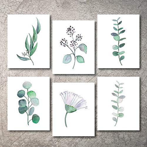 Nature Art Print Poster - Botanical Prints Wall Decor - Kitchen Art Eucalyptus Leaves Set UNFRAMED Pictures 6 PIECES Nature Floral Plant Flower Green Small Botanical Prints Wall Art Vintage Print looking Poster (11x14)