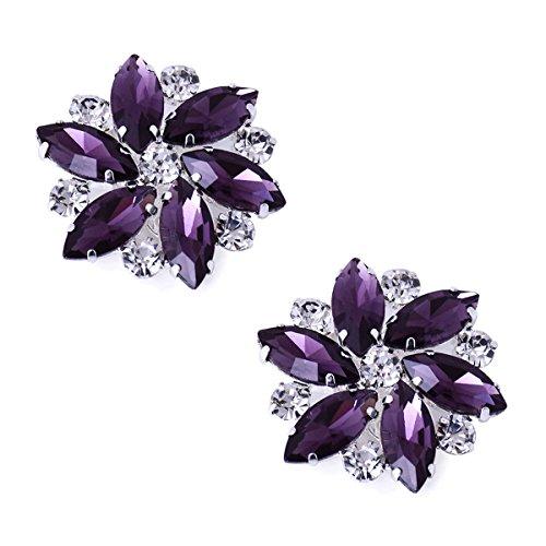 - ElegantPark AJ Shoes Dress Hat Accessories Fashion Rhinestones Crystal Shoe Clips 2 Pcs Purple