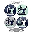 12 Monthly Baby Stickers, Boy, Deer, Antlers, Baby Belly Stickers, Monthly Onesie Stickers, First Year Stickers Months 1-12, Chevron, Blue, Navy, Navy Blue, Mint, Gray, Grey, Woodland, Baby Boy