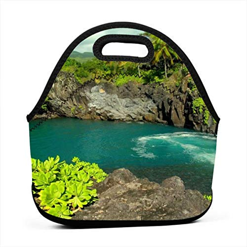 Hawaii Tropical Island Nature Green Collapsible Insulated Soft Lunch Leakproof Cooler Bag For Camping/Picnic/BBQ/Family Activities