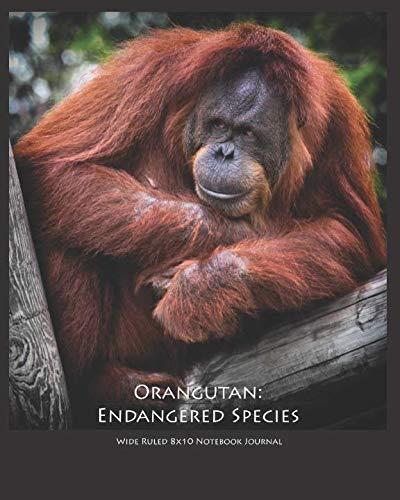 Orangutan: Endangered Species Wide Ruled 8x10 Notebook Journal ()