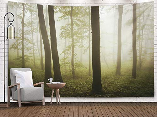 Sertiony Hanging Wall Tapestry, Art Map Tapestry Décor 80x60 Inches Misty Forest for Bedroom Colorful Big Tapestries