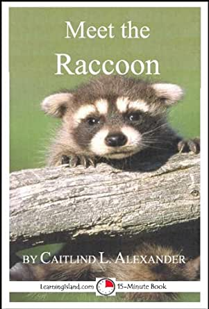 meet raccoon singles For more information on nuisance and problem wildlife,  should be left to professionals and individuals who meet state  raccoon : single-door.