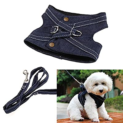 Jocestyle Puppy Cat Small Dog Vest Harness Leash Set Canvas Traction Rope Lead Walking Traning Tool