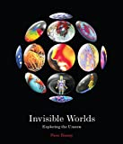 img - for Invisible Worlds: Exploring the Unseen book / textbook / text book
