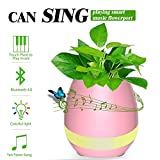 Music Flowerpot,Wireless Bluetooth Speaker Touch Plant Piano Music Playing Flowerpot and Smart Multi Color LED Light Round Plant Pots (whitout Plants)-QINUKER Pink For Sale