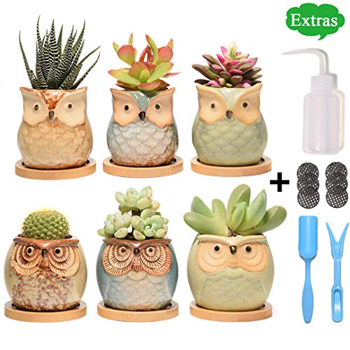 Succulent Planter, Cute Ceramic Owl Planters with Bamboo Saucers & Gardening Tools, 2.5 Inch Small Flower Pot, Set of 6 Pots for Plants - Plants Excluded