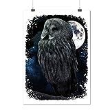 Owl In Moonlight Darkness Bird Matte/Glossy Poster A2 (60cm x 42cm) | Wellcoda