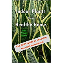 Indoor Plants for a Healthy Home