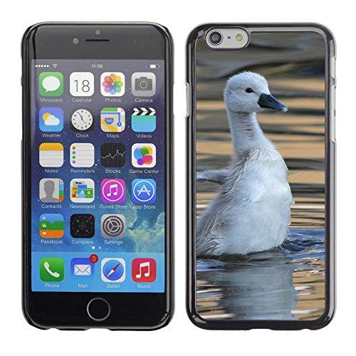 "Premio Sottile Slim Cassa Custodia Case Cover Shell // V00002892 bébé cygne // Apple iPhone 6 6S 6G 4.7"""