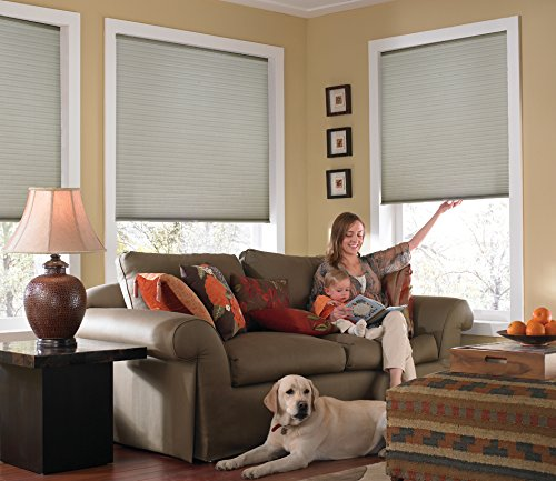 Windowsandgarden Custom Cordless Single Cell Shades, 24W x 39H, Cool Silver, Any Size 21-72 Wide and 24-72 High