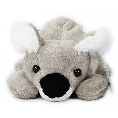 WILDREAM The Koala Plush Toy product image