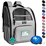 PetAmi Deluxe Pet Carrier Backpack for Small Cats and Dogs, Puppies | Ventilated Design, Two-Sided Entry, Safety Features and Cushion Back Support | For Travel, Hiking, Outdoor Use (Light Gray)