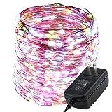 ErChen LED String Lights,ER CHEN(TM) 80Ft 480 LEDs Copper Wire Lights,Waterproof Starry String