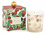 Michel Design Works Gift Boxed Soy Wax Candle, 14-Ounce, Black Cherry