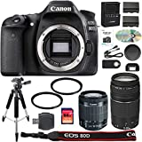 Canon EOS 80d Digital SLR Camera + 18–55mm STM + Canon 75–300mm III Lens + Lector de tarjetas SD + 64GB SDXC + Mando a Distancia + Batería de repuesto + accesorio Bundle–Versión Internacional
