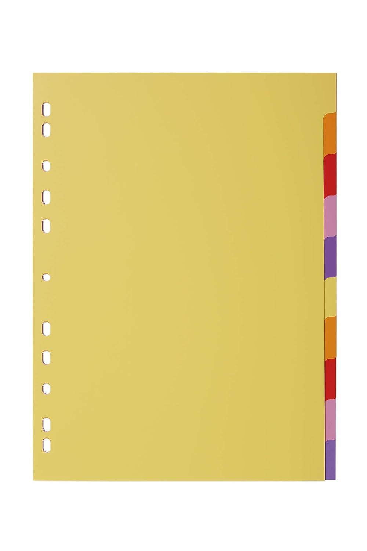 Divisorio con cavalierini colorati DURABLE 674327 copertina personalizzabile foratura universale etichette personalizzabili f.to A4 10 tasti