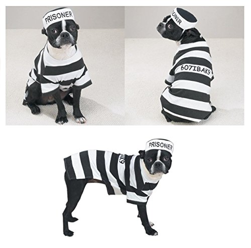 PRISON COSTUMES For DOGS Dress Your Pup Like a Prisoner in Stripes Bad (Criminal Dog Costume)