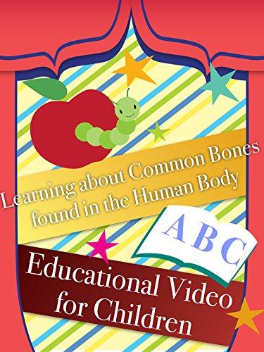 acs education services - 4