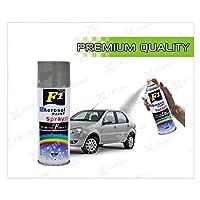 Car Auto Multi Purpose Lacquer Spray Paint, Medium(Grey)