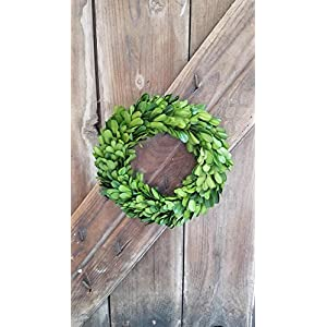 "Boxwood Candle Ring 8"" -Set of 2 19"