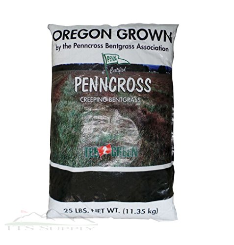 Penncross Bentgrass Seed - 25 Lbs. by SeedRanch (Image #1)