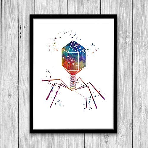 Science decor bacteriophage virus biology art print Microbiologist Gift Microbiology Wall Art