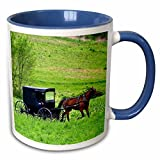"3dRose mug_93371_6 ""Amish Farm with Horse buggy near Berlin Ohio US36 DFR0018 David R. Frazier"" Two Tone Blue Mug, 11 oz, Blue/White"