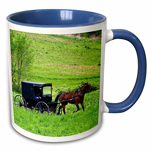 Amish Horse Buggy - 3dRose (mug_93371_6) Amish farm with horse buggy near Berlin, Ohio - US36 DFR0018 - David R. Frazier - Two Tone Blue Mug, 11oz