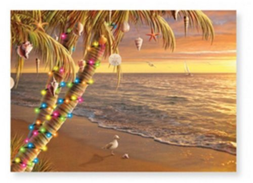 Christmas Cards - Box Set 16 Cards and 16 Envelopes - Gifts of the Sea - Palm Tree Sunset - Beach Scene with a Decorated Palm Tree Using Shells, Starfish and Holiday Lights