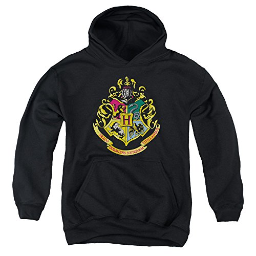 rry Potter Youth Hoodie Sweatshirt, Youth Large ()